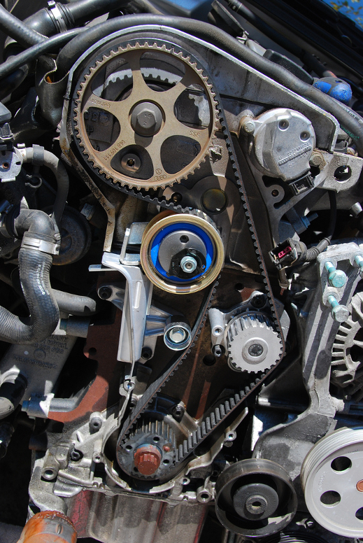 Engine Bay Cambelt