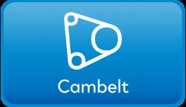 Dacia Cambelt