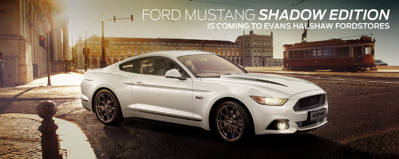 Ford Mustang Carousel
