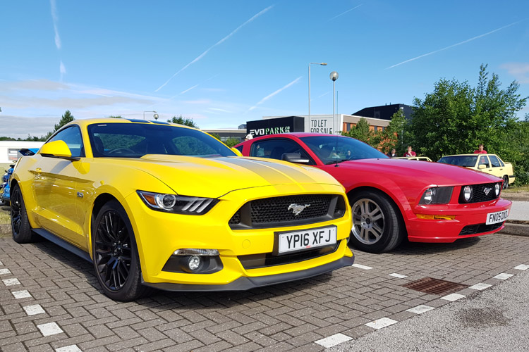 Mustang line up
